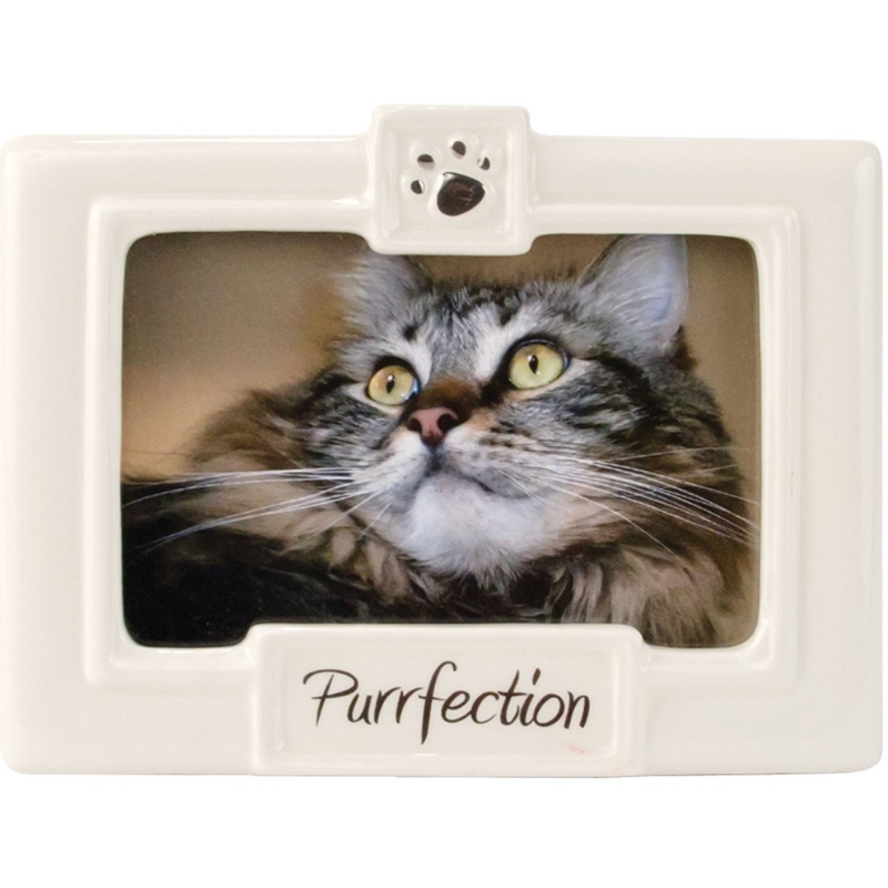 Purrfection Frame